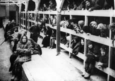 Interno di Auschwitz-Birkenau